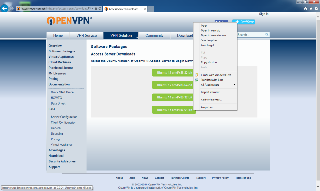 openvpn_access_server_bridge-01_bridge_server-03_openvpn_access_server_website_downloads