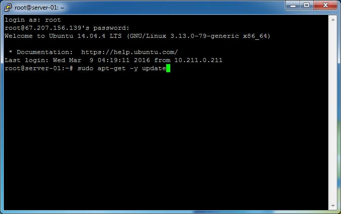 openvpn_access_server_bridge-01_bridge_server-06_apt-get_update