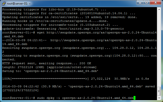 openvpn_access_server_bridge-01_bridge_server-08_install_openvpn_access_server